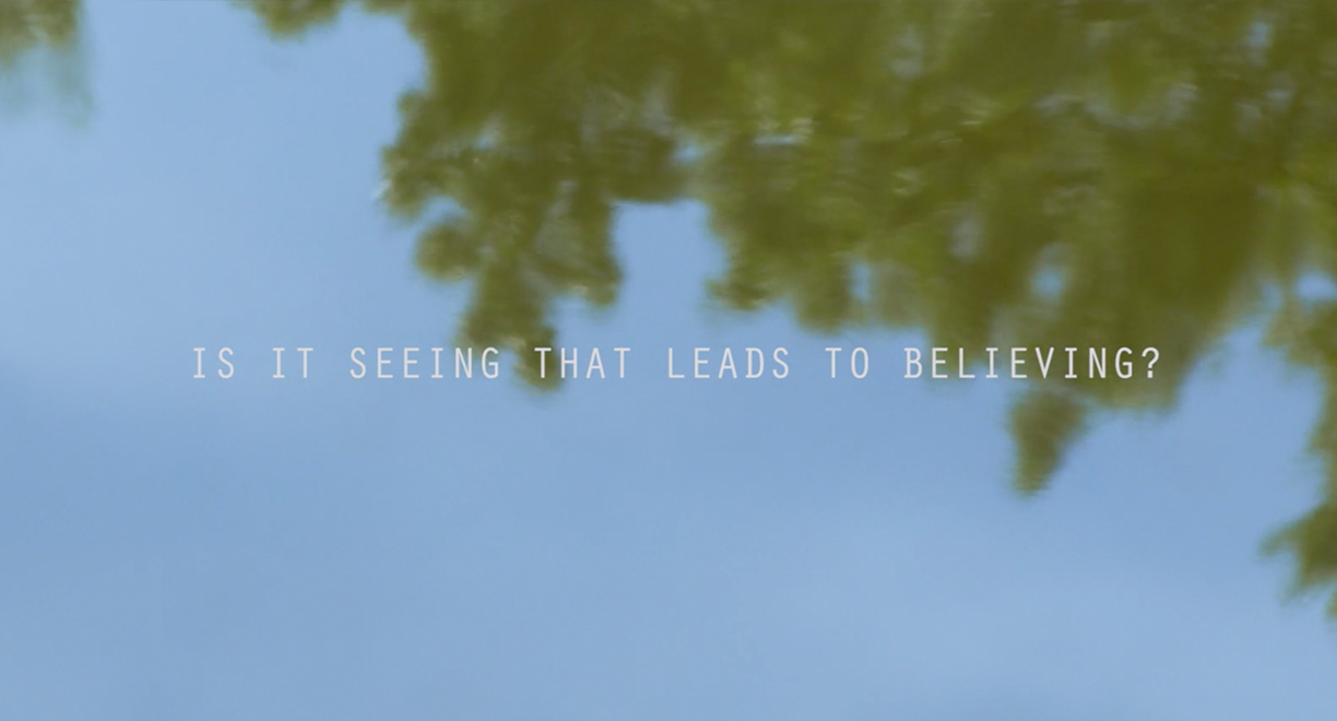 Believing is Seeing thumbnail image