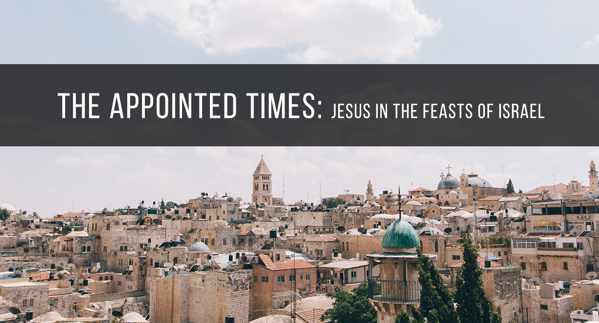 The Appointed Times: Jesus in the Feasts of Israel thumbnail image