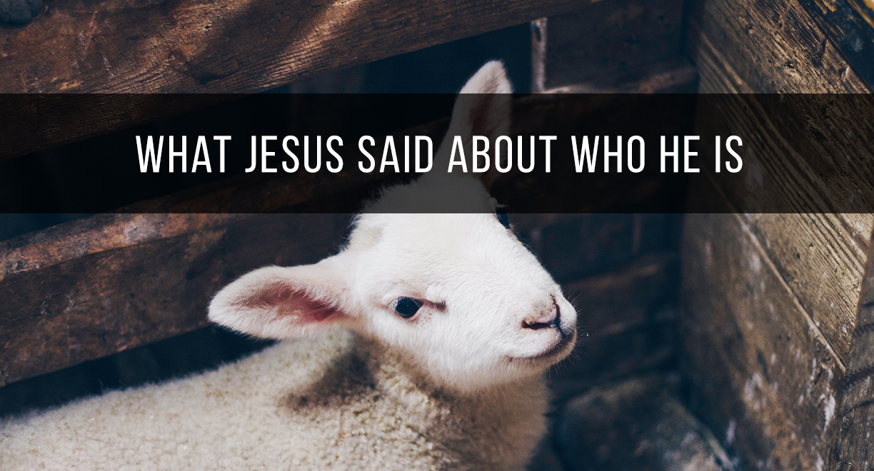 What Jesus Said About Who He Is thumbnail image